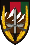 cstc-afghanistan-patch